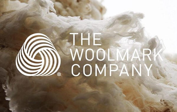 The Wool Lab, Transforms For More Collaboration